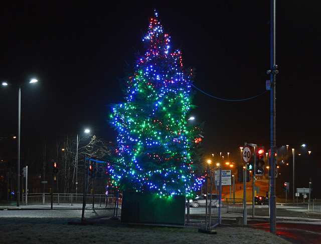 Baillieston Christmas Tree Accurate